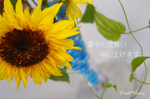 Img_0124_2