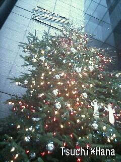 Christmas Tree ☆