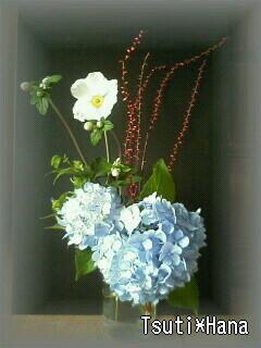 庭の花で…
